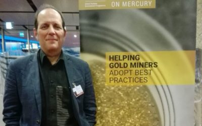 Towards the reduction and elimination of mercury use in the artisanal and small-scale mining sector