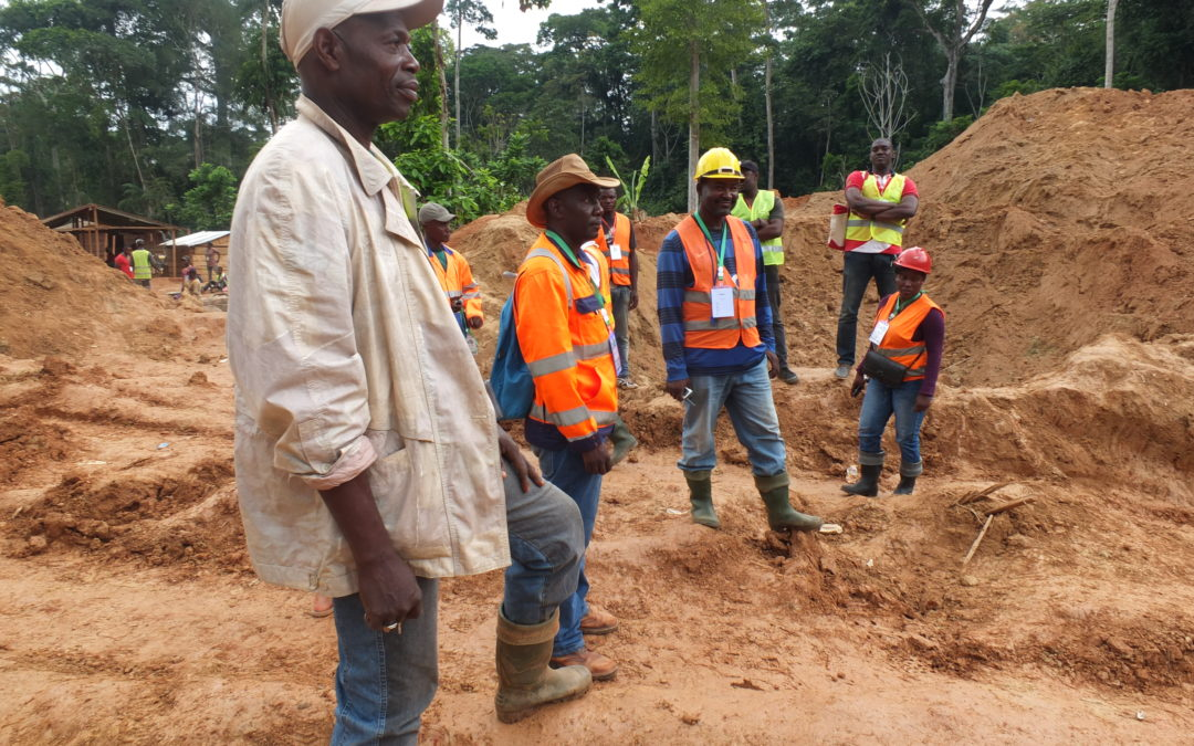 Development of a methodology for the formalization, improvement of access to financing sources and improvement of gold ore processing in Cameroon