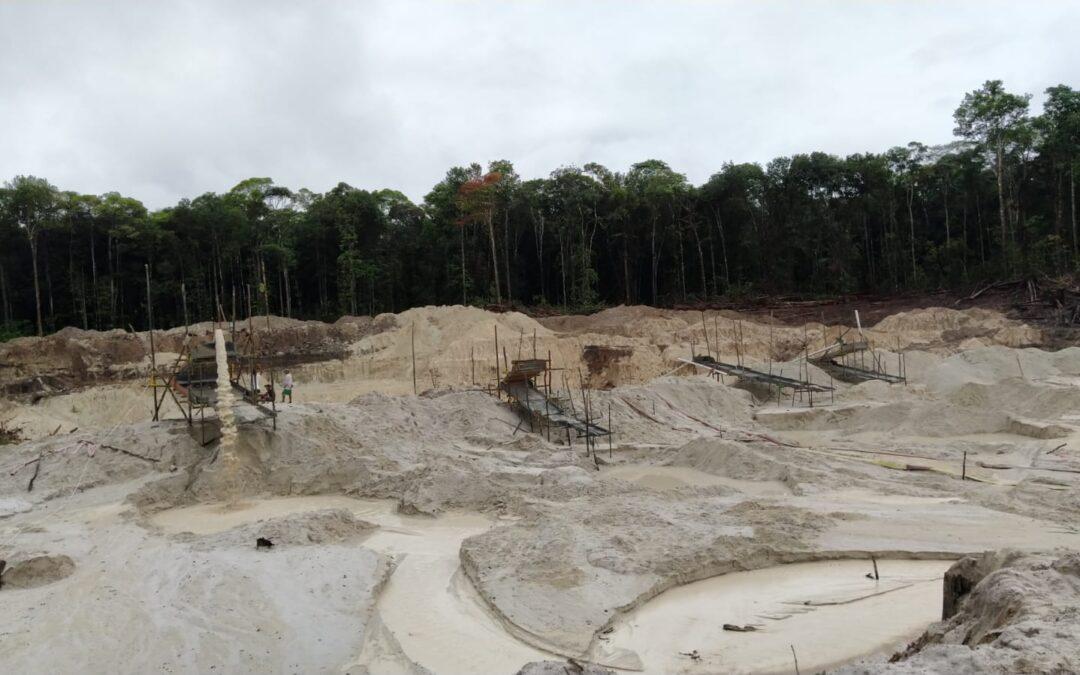 Eliminación de mercurio en la región de Guayanas